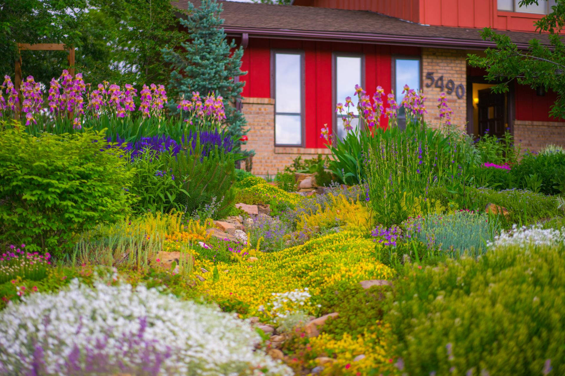 City of Loveland News Releases Garden in a Box Beautiful