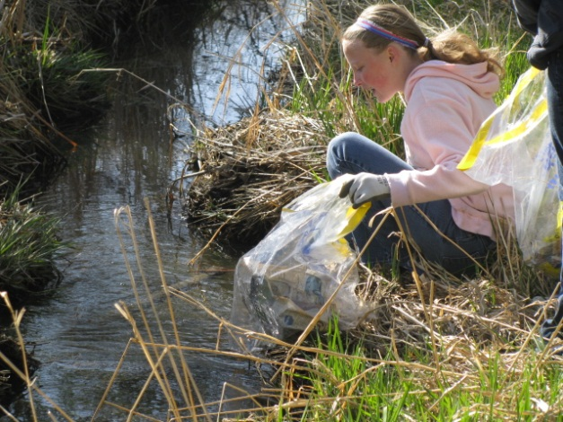 Annual Waterway Cleanup