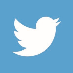 Twitter Small