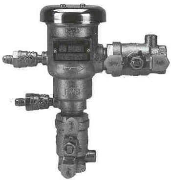 Picture of Pressure Vacuum Breaker Assembly