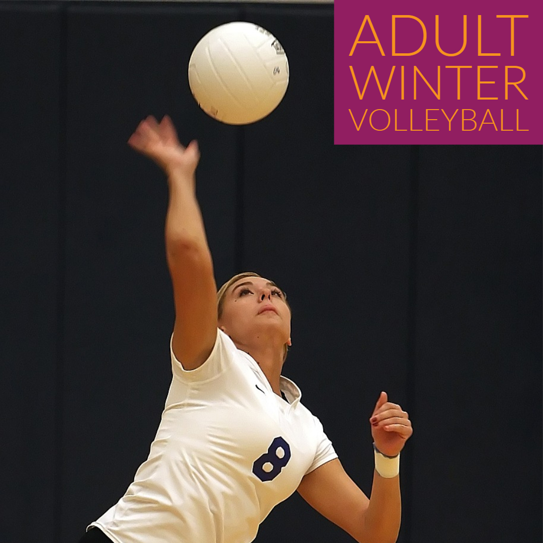 adult winter volleyball leagues in Loveland