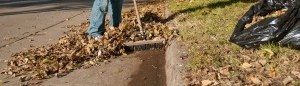 Resident raking leaves out of street gutter
